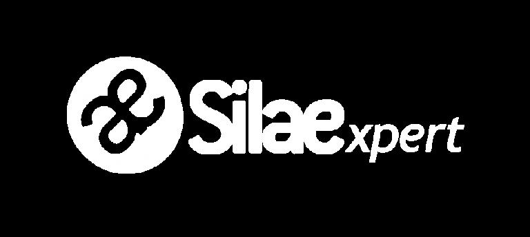 logo silae blanc ogi
